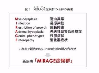 未知の遺伝子疾患「MIRAGE」