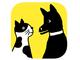 「ほぼ日」初のスマホアプリ「ドコノコ」 犬や猫の写真を投稿、思い出を共有