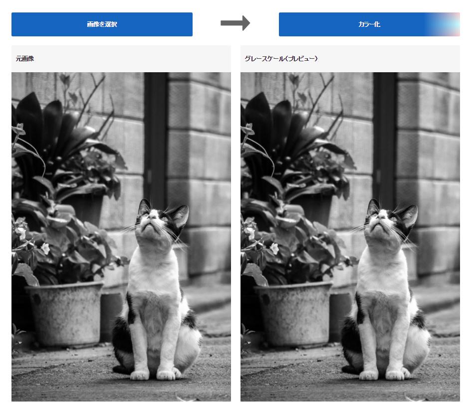 モノクロ写真をアップすると人工知能で白黒写真をカラーにしてくれるWebサービスを早稲田が開発 [無断転載禁止]©2ch.net [928380653]->画像>106枚