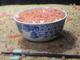 サケのふ化装置は「イクラ丼」 上越市立水族博物館からニコニコで年越し生配信