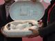 aiboは繭から生まれる ソニーの「aibo」、誕生イベント開催