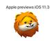 「iOS 11.3」開発者向けβリリース バッテリー関連などの新機能を紹介