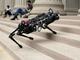 "MITの四足ロボット「Cheetah 3」、""目が見えなくても""ジャンプしたり階段を登れるように"