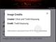 Google、画像検索結果の画像に制作者名と著作権者を明記へ