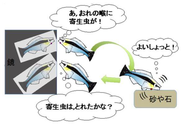 http://image.itmedia.co.jp/news/articles/1902/08/kf_osakacu_02.jpg