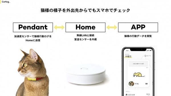 ネコの遠隔見守りサービス「Catlog」登場 IoT首輪で活動データ取得、クラウド上で分析 「ご飯を食べました ...