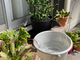 庭の水やりで身近なIoTを体験、自動水やりシステムの構築 〜給水ポンプの取付〜