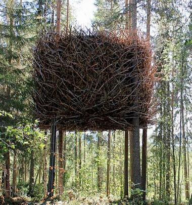スウェーデンにある巨大な鳥の巣...