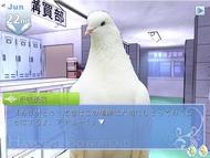 ky_hato_0812_007.jpg