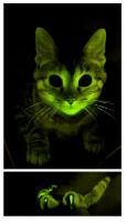 ah_cat.jpg