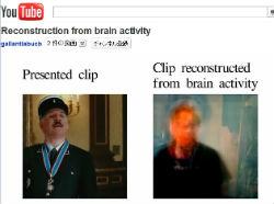 ah_brain1.jpg