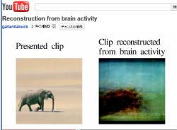 ah_brain2.jpg