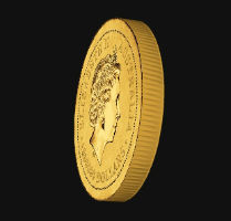 ah_coin2.jpg