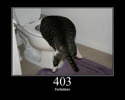 ah_403.jpg