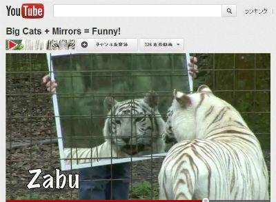 ah_tiger3.jpg