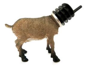 ah_goat.jpg