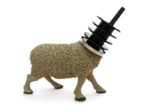 ah_sheep.jpg