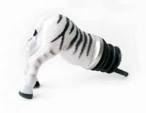 ah_zebra.jpg