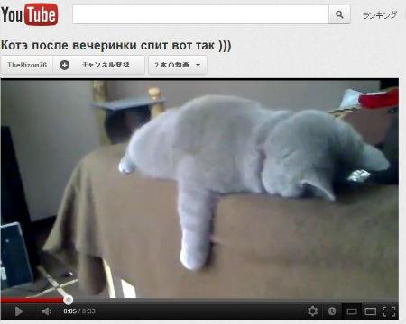 ah_sleepcat.jpg