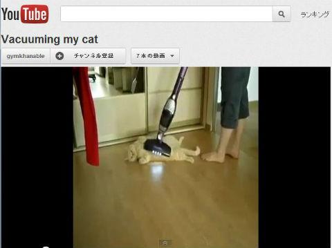 ah_cat_vacuum.jpg