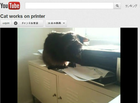 ah_cat_printer.jpg