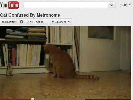 ah_cat_metro.jpg