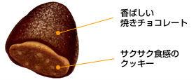ah_takenoko2.jpg