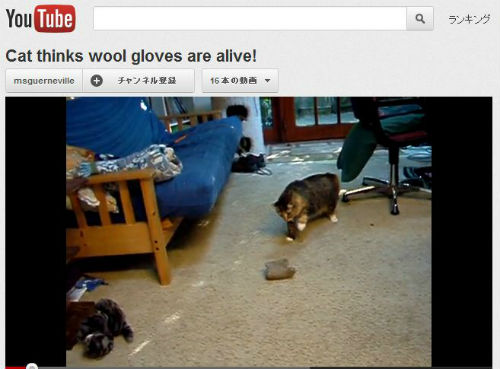 ah_cat_glove.jpg