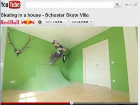 ah_skate2.jpg