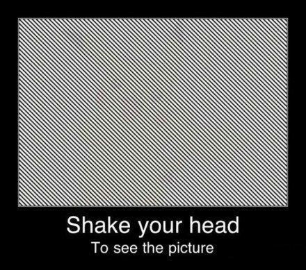 ah_shake.jpg