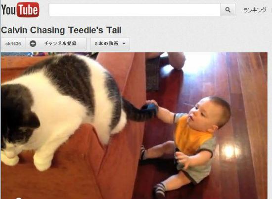 ah_cat_baby.jpg
