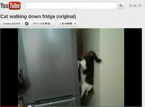 ah_cat_ver2.jpg