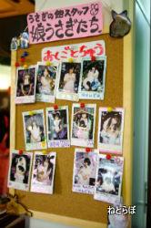 ah_usagi02.JPG