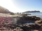 ah_beach13.jpg