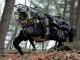 ちょっと不気味な米軍の4つ足ロボットの最新動画公開 人間について行く様子も