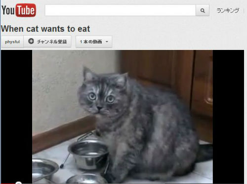 ah_cat_eat.jpg