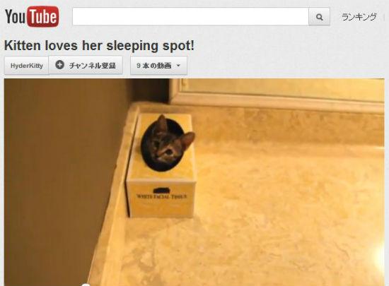 ah_cat_box.jpg