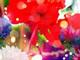 「さくらん」「ヘルタースケルター」—— 蜷川実花の世界を表現できるカメラアプリ