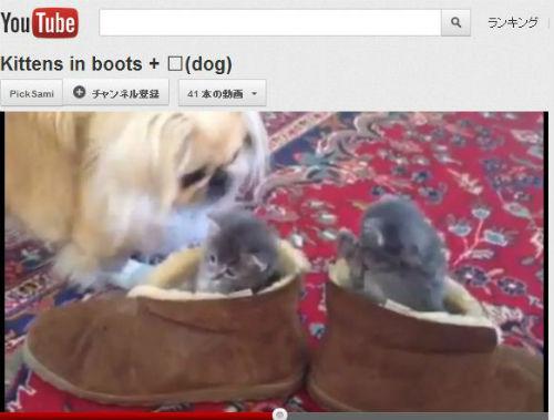 ah_cat_boots.jpg