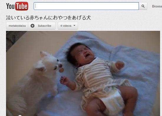 ah_baby_dog.jpg