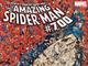 スパイダーマン、死亡——「アメイジング・スパイダーマン」第700巻で