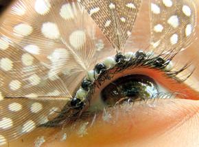 ah_eye8.jpg