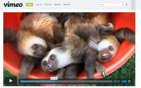 ah_sloth.jpg