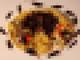 【閲覧注意】グロさと栄養満点! バッタの生パスタ「イナゴのペペロンチーノ」登場