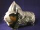 これはかわいい! eBayでモルモット専用アーマー&ヘルメットが販売中