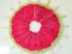 Suicaとスイカ:7月27日限定! 「ビュー・スイカ」カードの申込者にスイカバー18本プレゼント