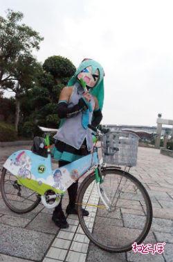 haru_kiku1.jpg