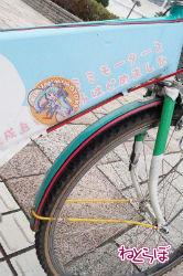 haru_kiku5.jpg