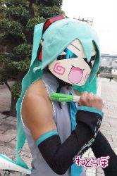 haru_kiku8.jpg