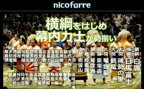 ah_sumo3.jpg